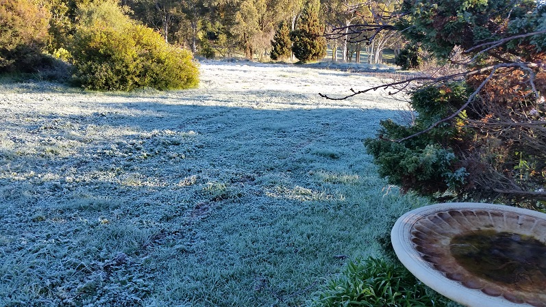Crookwell first visit frost
