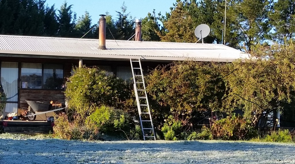 Ladder holds up the gutter
