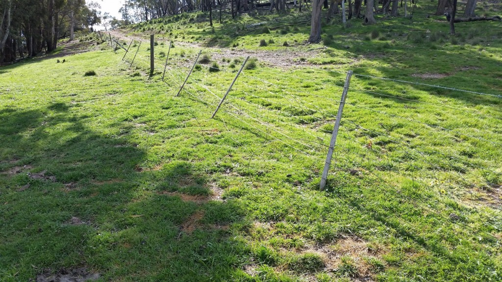 fence lean 30